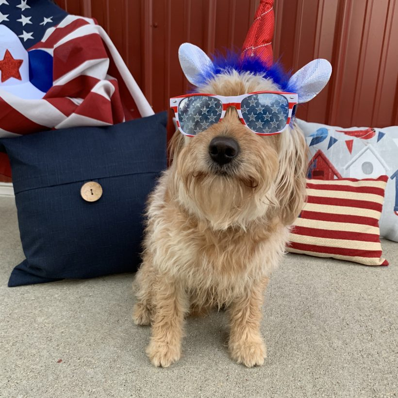 Delaney is LOVING the 4th of July Weekend !!